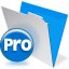 FileMaker Pro for Windows icon